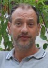 Marco Alfò